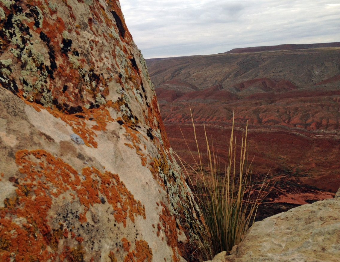 Crest of Comb Ridge on the parcel that was sold.