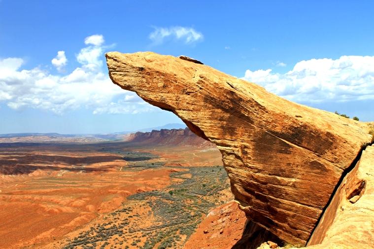 Comb Ridge rock.