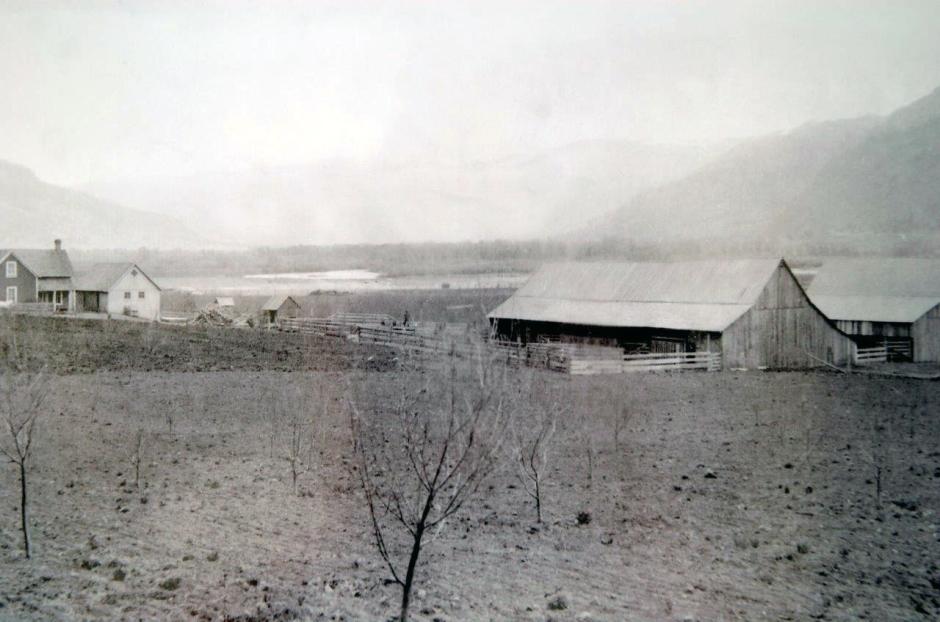 TheFarmcirca1930s